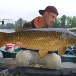 beautiful carp boat fishing