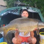 perfect carp from france