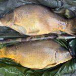 karper vissen in frankrijk